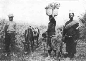 Belgische Versorgungsgüter werden in Ostafrika herangebracht