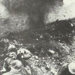 Kriegstagebuch 5. November 1916