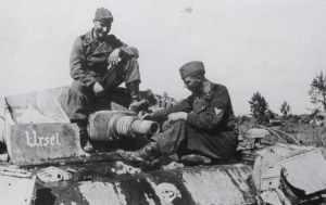 Sturmgeschütz der Totenkopf-Division