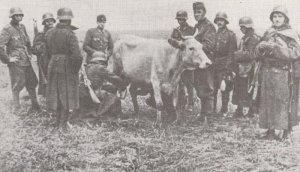 Soldaten der ungarischen 2. Armee