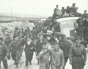 Gefangene Achsentruppen Tunis