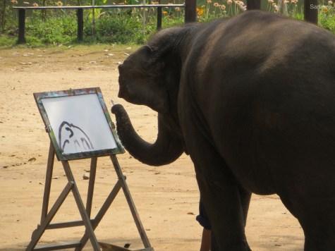 Elefantenkunst!