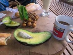 Frühstück vom Markt