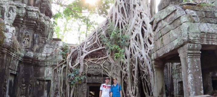 Die Wurzeln über den Tempeln sind echt beeindruckend