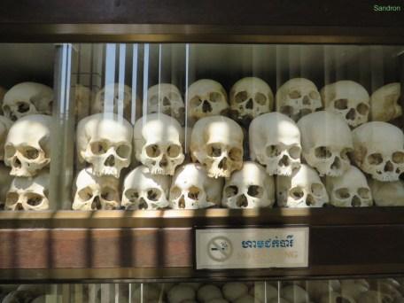 An vielen Schädeln kann man erkennen, mit welchem Werkzeug sie umgebracht wurden.