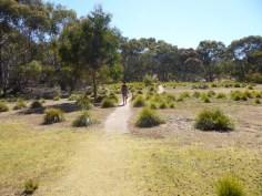 Im Flinders Chase Nationalpark