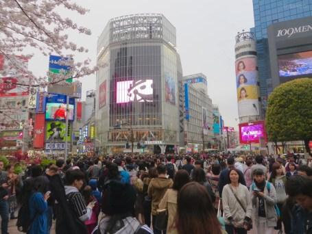 Shibuya an einem Samstag