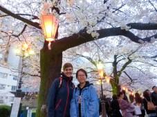 Im Kirschblütenpark