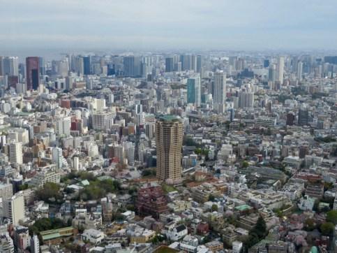 Tokyos Skyline von hoch oben