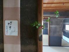 Im Haus des Zen-Meisters