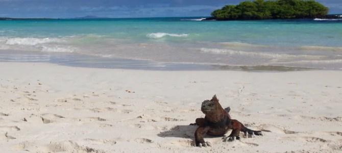 Was kostet Galapagos?
