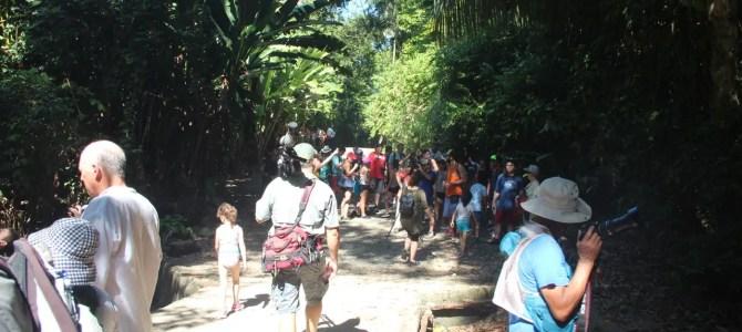 Gereizt in Costa Rica: ein Verriss
