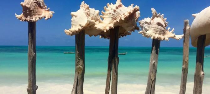 Zwölfter Monat Weltreise: 10 Erkenntnisse