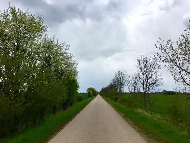 Feldweg bei Coswig
