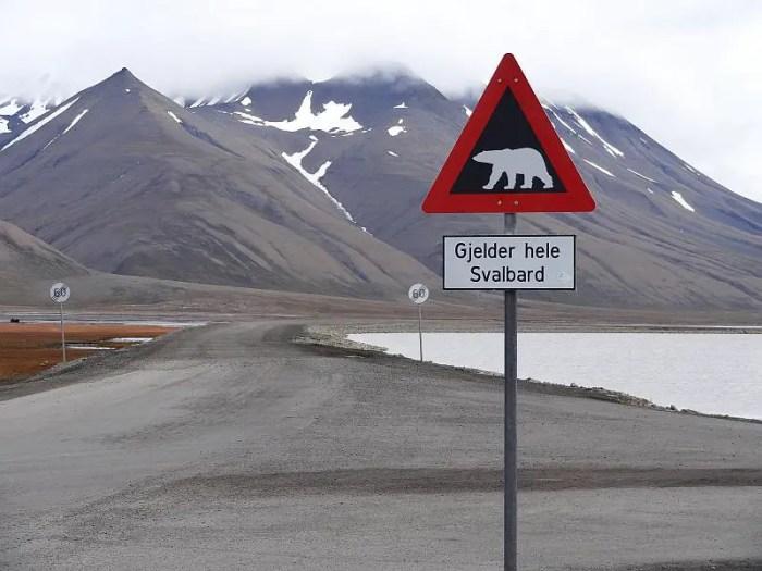 Ausflug Spitzbergen Berge Schild mit Eisbaer