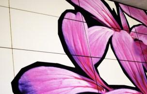Fototour entlang der Münchner U3: Blumen zieren Moosach