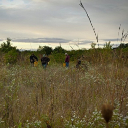 Volunteer Work Day 9.26.18 @ Welty Environmental Center