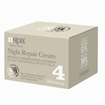 Night-Repair-Cream