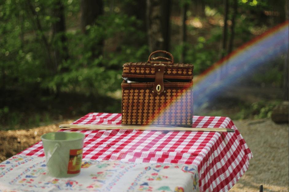 perfect family picnic