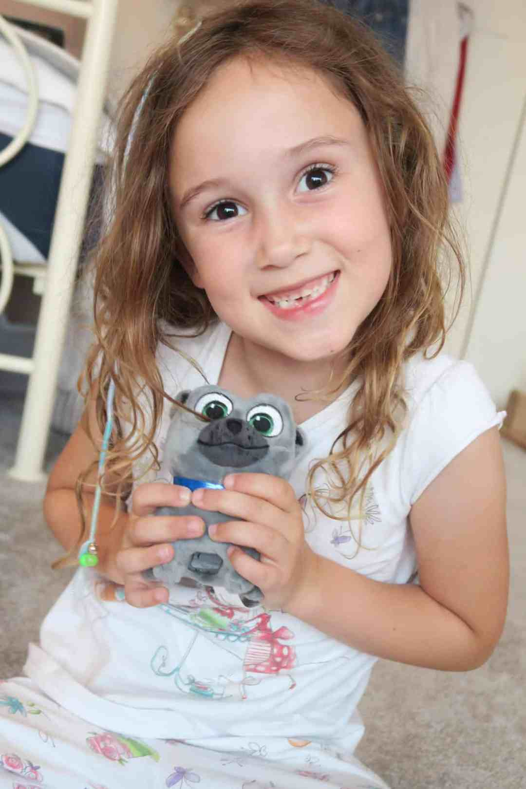 Puppy Dog Pals Toy Collection Review