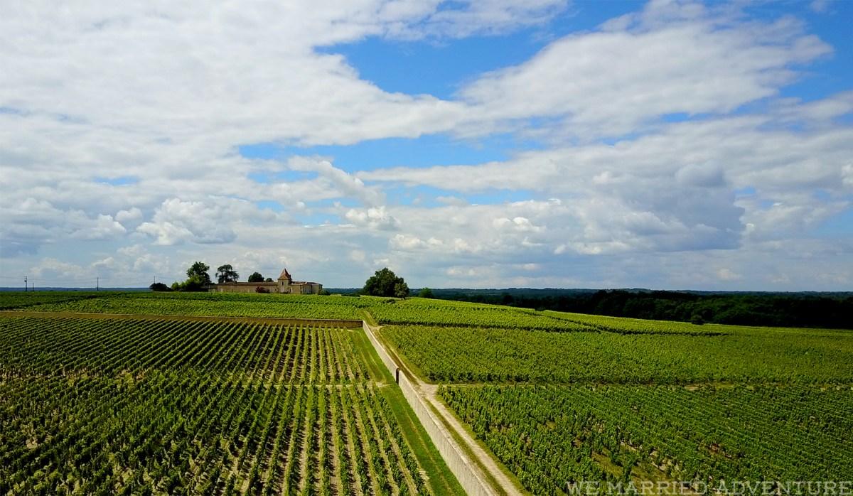 drone_vineyards01_wm.jpg