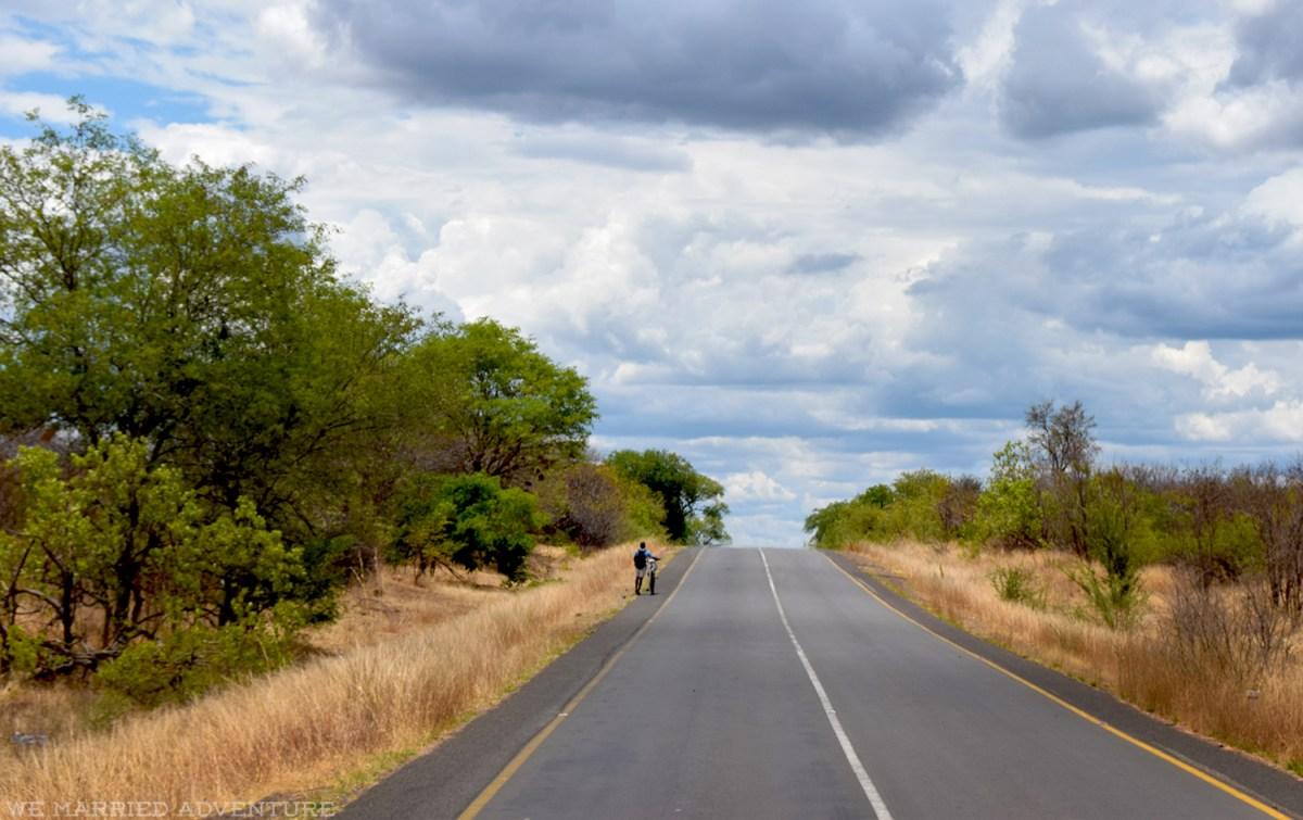 road_bicycle02_wm