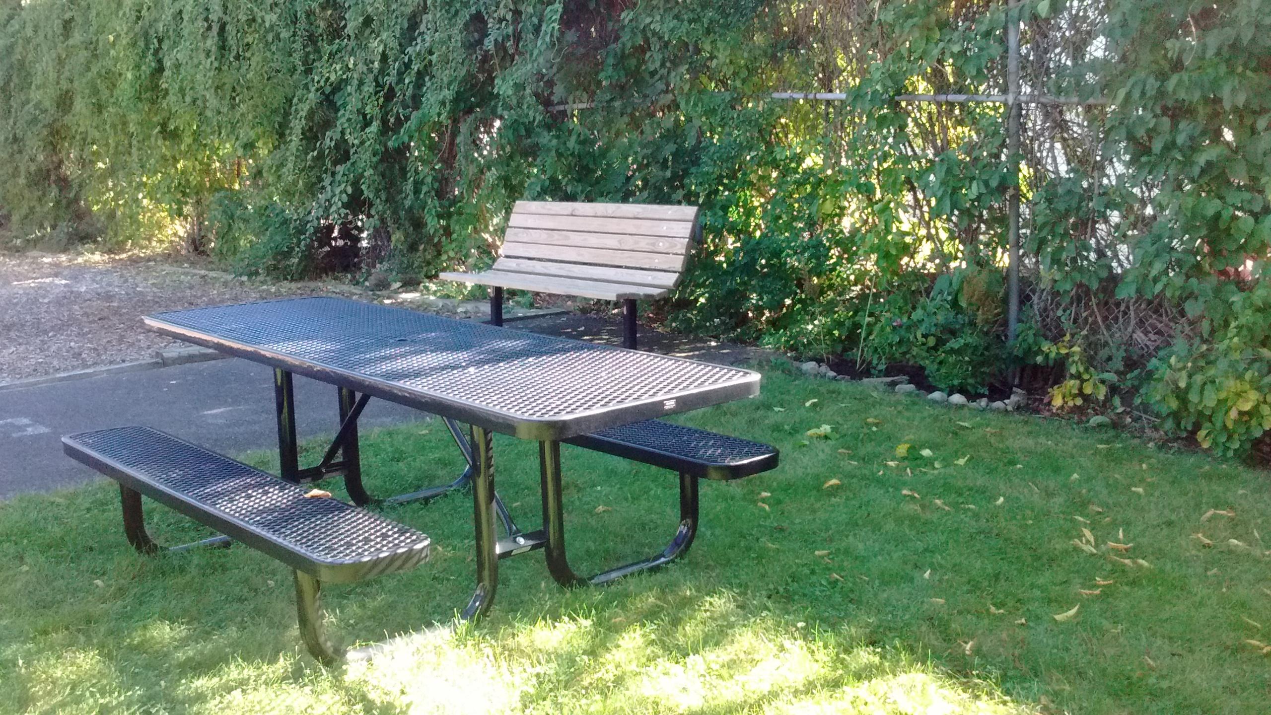 Clark Street Park's New Picnic Table