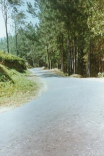 sm-photo04