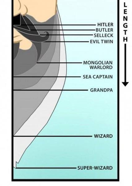 Explaining Facial Hair in Fiction