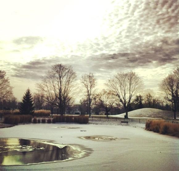 winter-scene-pond-park