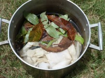 soaking leaves and wool