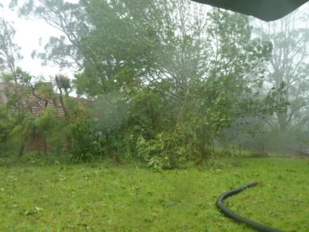 storm 021