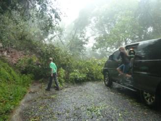 storm 035
