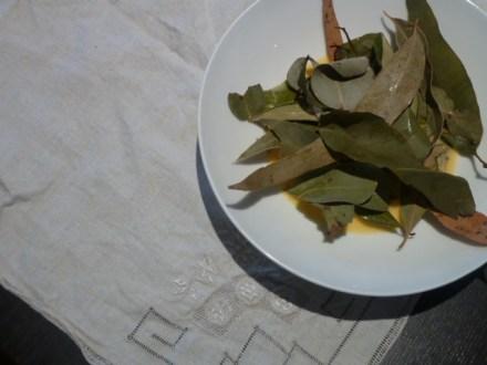 leaves in egg