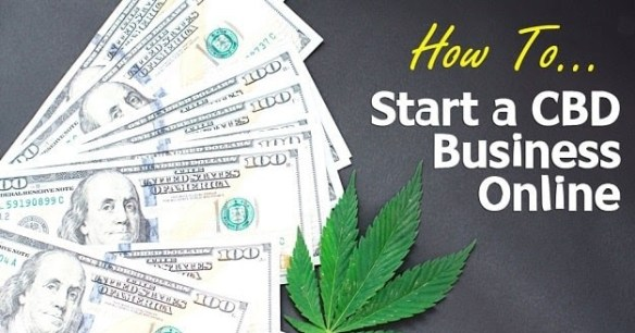 how-to-start-cbd-oil-business-startup-founder-cannabidiol-smb