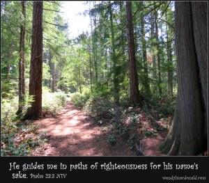 Psalm 23:3 NIV Forest path.