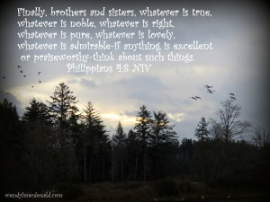 Finally, brothers and sisters, whatever is true, whatever is noble, whatever is right, whatever is pure, whatever is lovely, whatever is admirable--if anything is excellent or praiseworthy--think about such things. Philippians 4:8 NIV Focusing on Beauty #amwriting wendylmacdonald.com