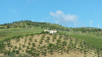 Farmland and turbines