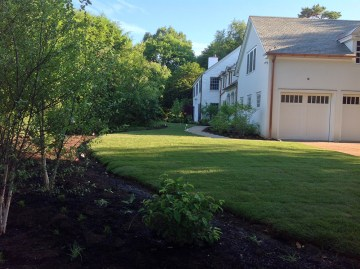 Perennial flower bed and trees bordering lush green lawn
