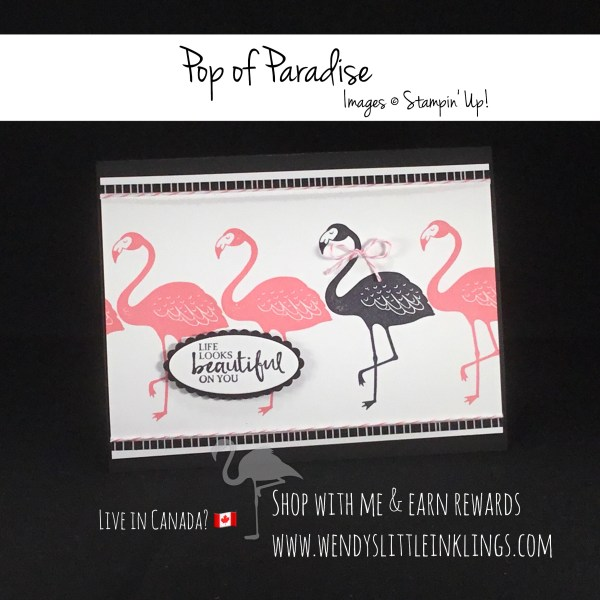 Wendy's Little Inklings: Be Beautiful with Pop of Paradise