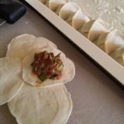 Pork, shrimp and chive dumplings