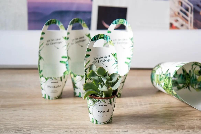 Mini Garten Deko Kaufen Kartoffelkiste Mini 50 Kg Kaufen Bei Obi