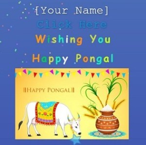 happy pongal wishing script