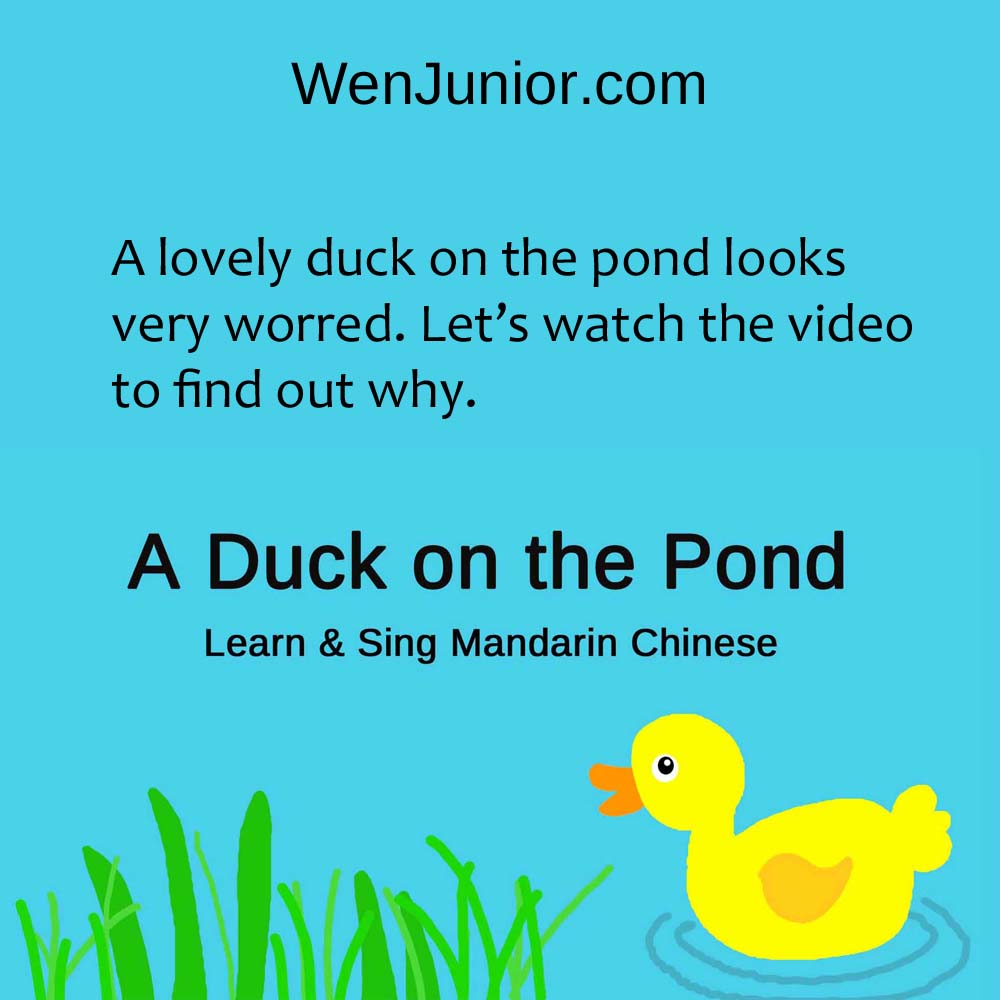 WenJunior.com - A Duck on the Pond Learn & Sing Mandarin Chinese Video