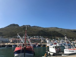 Hafen in Kalk Bay