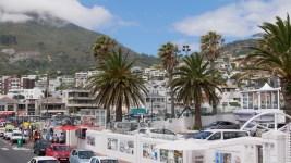 Auf der Bustour zum Tafelberg