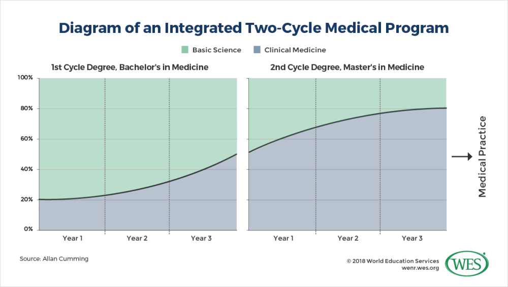 medium resolution of while the bachelor component focuses primarily on basic sciences the integrated groningen curriculum emphasizes patient interaction from the first year of