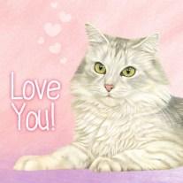 Dierenkaart kat