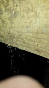 Detail of underfloor joist, showing decay and possible rot
