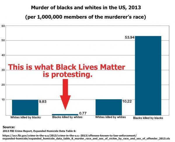 Murdes of blacks and whites, US 2013